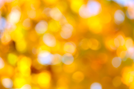 Autumn abstract, fall season colors  background with a magic lights, out of focus