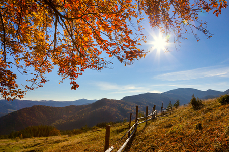 Autumn Landscape - yellow  leaves over mountains valley, blue sky and real sun - beautiful fall season day