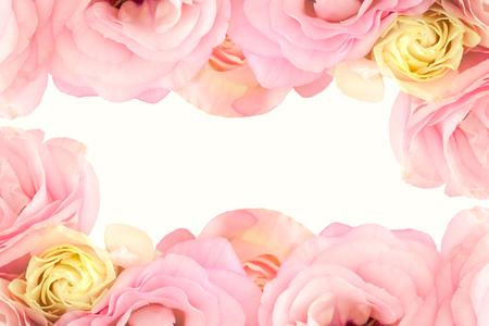 젠틀 핑크 꽃 테두리 - 흰색 배경에 고립 스톡 콘텐츠