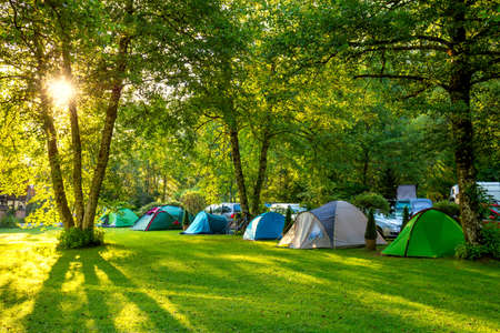 Tents Camping area, early morning, beautiful natural place with big trees and green grass, Europe Stok Fotoğraf