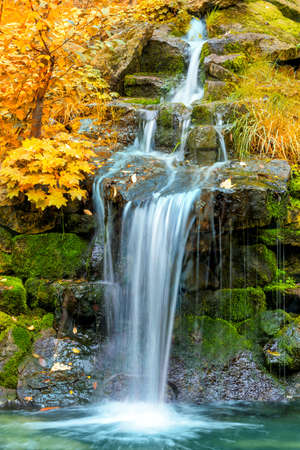 Waterfall in yellow Autumn forest, landscape, vertical Stock Photo - 64521425