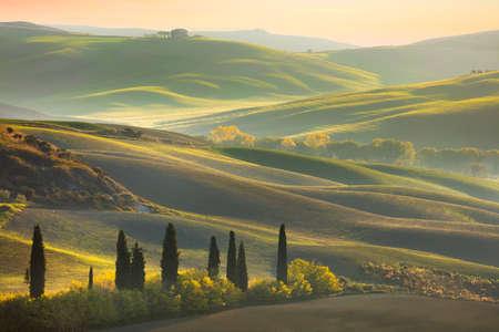 Verse Groene landschap van Toscane in het voorjaar van tijd - golf heuvels, cipressen bomen, groen gras en mooie blauwe hemel. Toscane, Italië, Europa Stockfoto - 64720203
