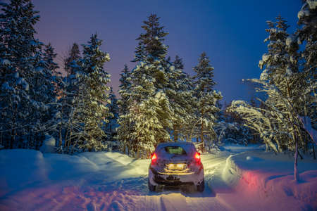 Winterlandschap met auto - rijden 's nachts - Lichten van auto en winter besneeuwde weg in donker bos, grote sparren bedekt sneeuw
