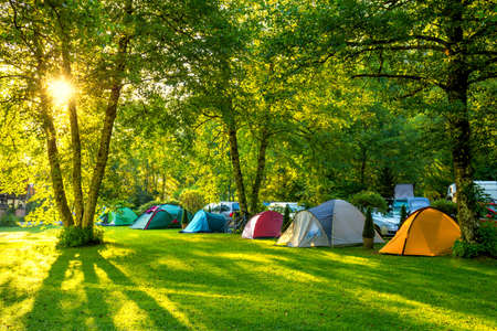 Tents Camping area, early morning with sunshine, beautiful natural place with big trees and green grass, Europe