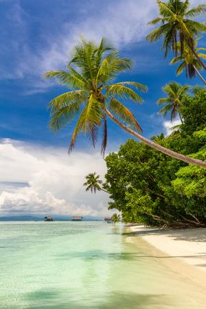 Wunderschöner Strand. Blick auf den tropischen Strand des Paradieses mit Kokospalmen. Ferien- und Urlaubskonzept. Tropische Insel, Meer und blauer Himmel