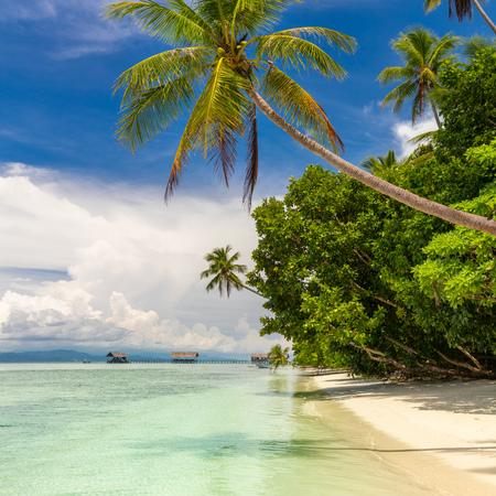 Paradies tropischer Strand. Niemand. Blick auf den tropischen Strand des Paradieses mit Kokospalmen. Ferien- und Urlaubskonzept. Tropische Insel, Meer und blauer Himmel