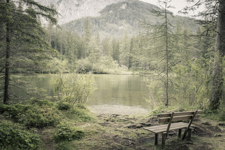 Alone bench in natural forest and lake in mountains, silent place, landscape
