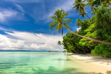 Paradise landscape of tropical beach - calm ocean waves, palm trees, blue sky with white clouds and nobody Standard-Bild