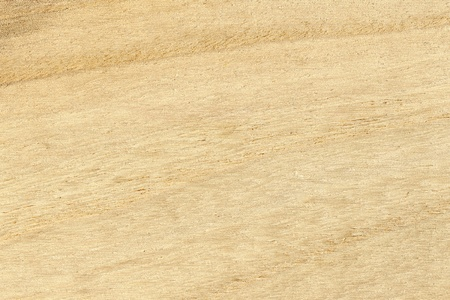 Wood texture, horizontal shape, high resolution photo