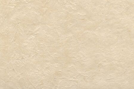 Handmade paper texture Stock Photo - 9735530