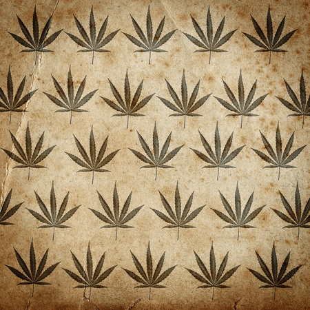 Grungy old paper background with cannabis leaves Foto de archivo
