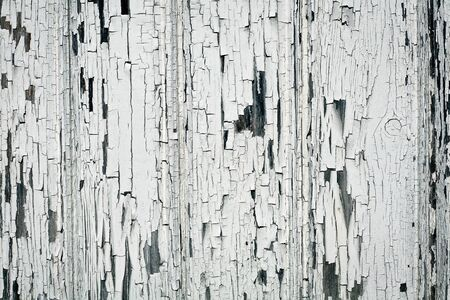 Background of white, peeling paint on an old wall  photo