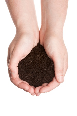 hands holding earth: Soil in hands isolated on white background