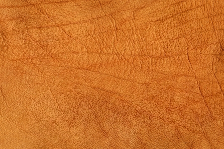 Brown crumpled leather texture background, high resulution   photo