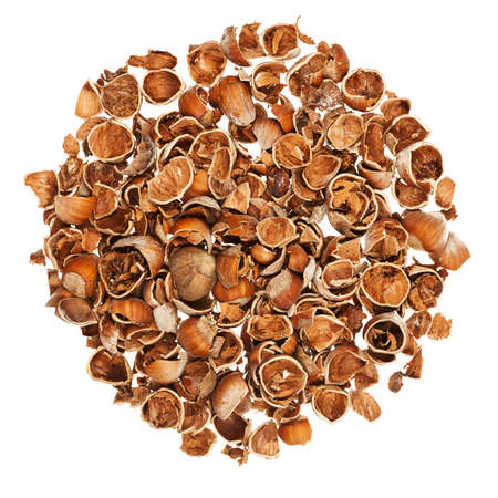 Pile of empty nutshells isolated on white background Stock Photo - 17466093
