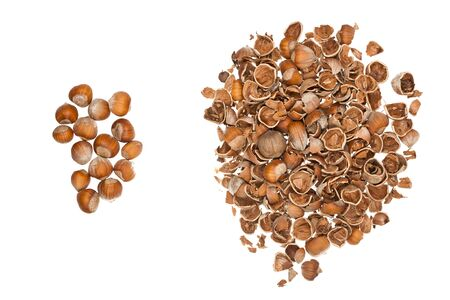 Pile of nuts and a pile of empty nutshells isolated on white background Stock Photo - 17466088
