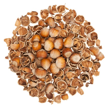Pile of empty nutshells with some nuts on top isolated on white background Stock Photo - 17627043