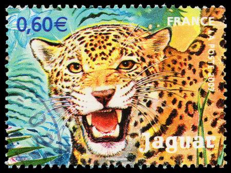 FRANCE - CIRCA 2007  A stamp printed in France shows jaguar, circa 2007