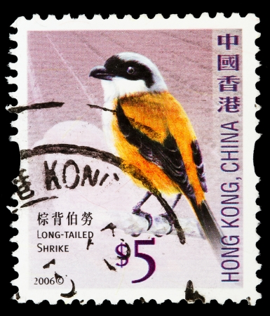HONG KONG, CHINA - CIRCA 2006: A stamp printed in Hong Kong shows long tailed shrike, circa 2006  Stock Photo - 20188190