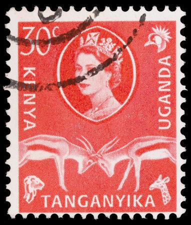 UGANDA - KENYA - TANGANYIKA - CIRCA 1954: A stamp printed in Uganda - Kenya - Tanganyika shows Elizabeth II Queen Great Britain and antelopes, circa 1954