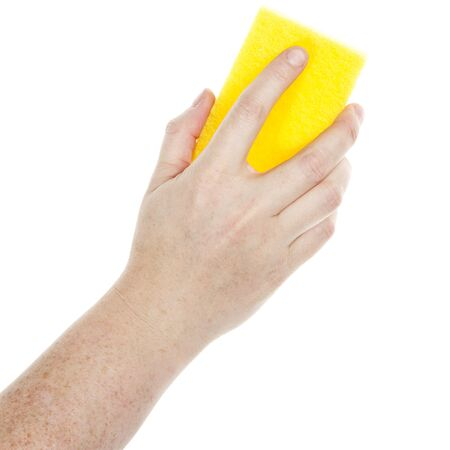 Female hand holding a cleaning sponge isolated on a white  photo