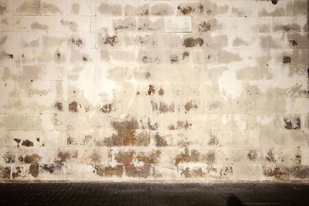 Old tiled wall with a blank white bricks   photo