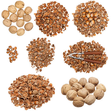 nutshells: Collection of nuts and empty nutshells isolated on white background