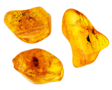 Three pieces of amber isolated on white background Foto de archivo