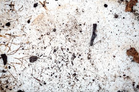 muddy: Muddy ceramic plate texture background