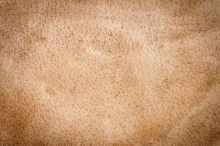 Genuine brown leather texture background. Abstract vintage natural cow skin backdrop. Wrong side of leather. Imagens