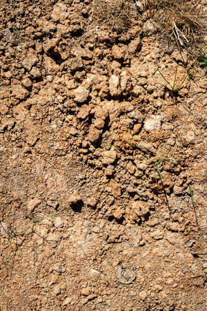 Abstract ground texture with clumps. Soil background. Foto de archivo