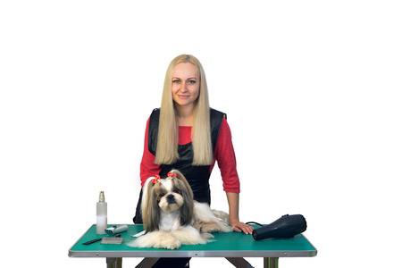 groomer: Woman groomer with cute shih-tzu dog - isolated on white