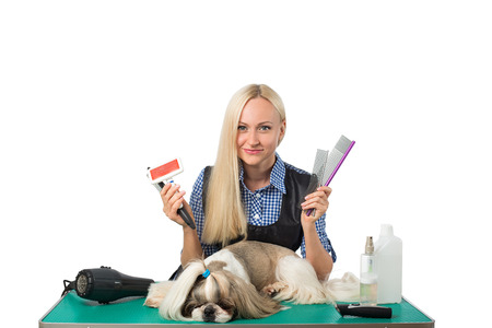 groomer: Beautiful smiling woman groomer with combs and cute shih-tzu dog - isolated on white Stock Photo