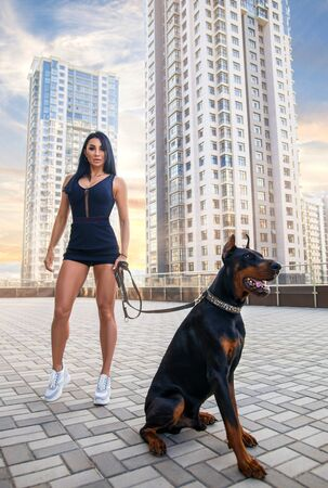 Beautiful fitness brunette girl with perfect legs posing on the city square in sexy sports costume with huge Doberman dog in the rays of setting sun. Фото со стока