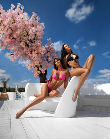 Two beautiful brunette girls with perfect shapes in the swimsuits posing near the pink tree and swimming pool on the white resort. Reklamní fotografie