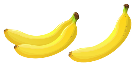 Bananas isolated Illustration