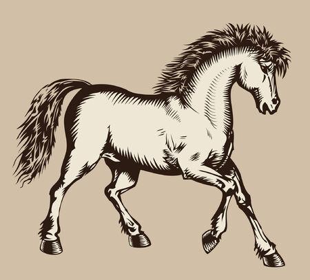 Prancing horse woodcut