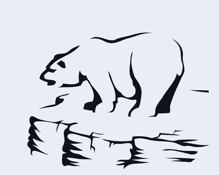 polar: Bear standing on a rock