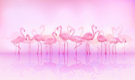 Flock of caribbean flamingos over a lake Vector