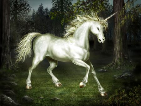 Graceful unicorn in the forest