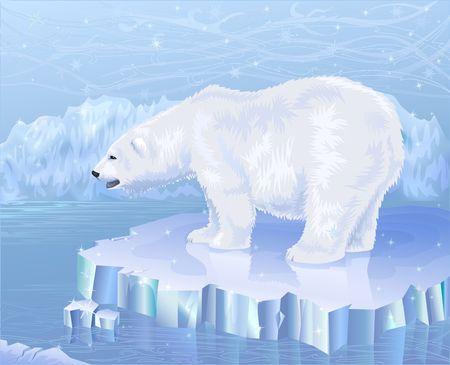 melting: Polar bear standing on an ice floe