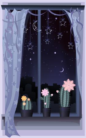 Night scene with three blooming cacti