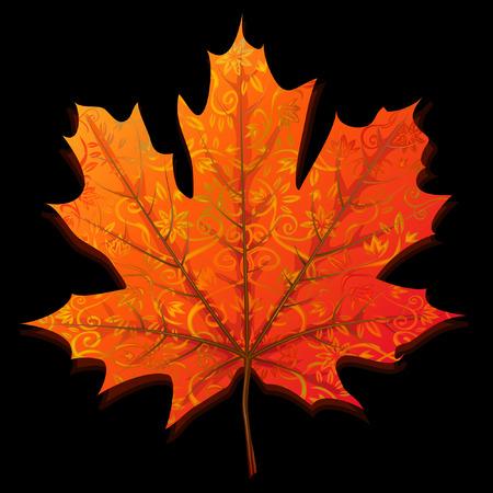 Autumn maple leaf isolated on black background