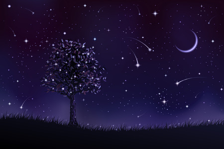 Lone tree at night (other landscapes are in my gallery) Vector