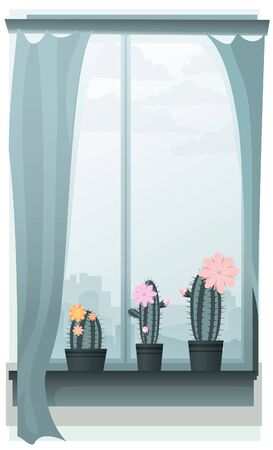 windowsill: Three blooming cacti on a window sill
