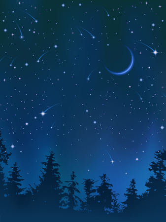 Clear night sky over the forest (other landscapes are in my gallery) Stock Vector - 4367803