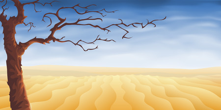Árbol del desierto (otros paisajes están en mi galería)