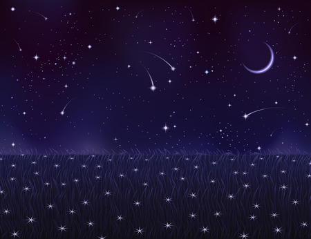 Night summer meadow covered with white star flowers (other landscapes are in my gallery) Illustration
