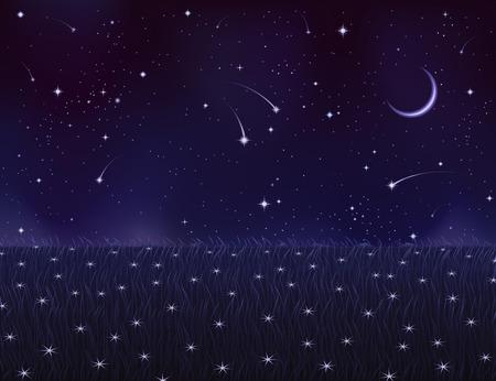 Night pré été couverte de fleurs étoile blanche (d'autres paysages sont dans ma gallerie)