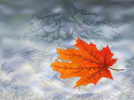 hojas de maple: Hoja de oto�o sobre el agua (hojas son en mi galer�a de arce aislado)